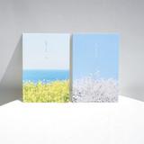Meri Film Spring flowers post card