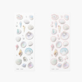 Appree Seashell Nature Clear Sticker