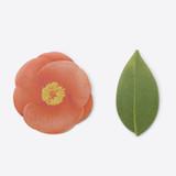 Appree Camellia leaf red sticky memo notes Medium