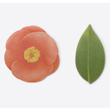 Camellia leaf red sticky memo notes