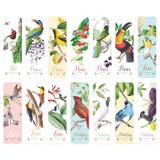 Composition of Bird vintage bookmark set