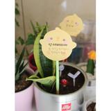 Bookcodi Molang piupiu cute sticky memo note