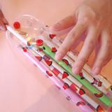 Watermelon - Odong et valerie clear folding pencil case