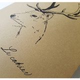O-check Deer A5 size 3 square sections notebook