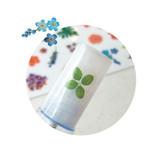 N.IVY Mercibloom transparent clear deco sticker set