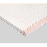 53 sheets -  Reading dateless monthly desk scheduler pad