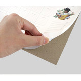 Sturdy back -  Reading dateless monthly desk scheduler pad