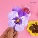 Light purple - ABJECTION Pansy flower card and envelope set