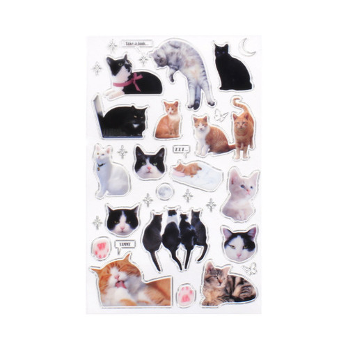 After The Rain Silver line street cat club deco sticker