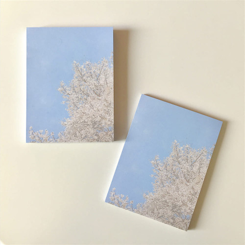 Meri Film Spring cherry blossom memo writing notepad