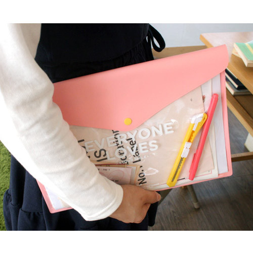 Clear button file folder case