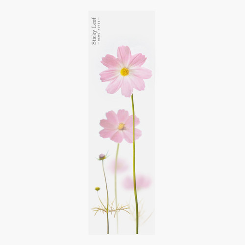 Pink cosmos sticky memo notes