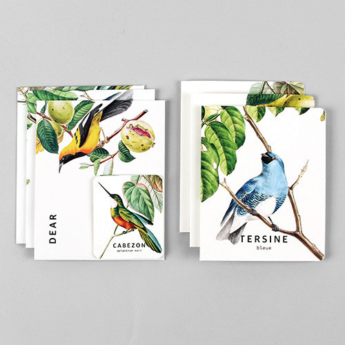 Bird illustration card set