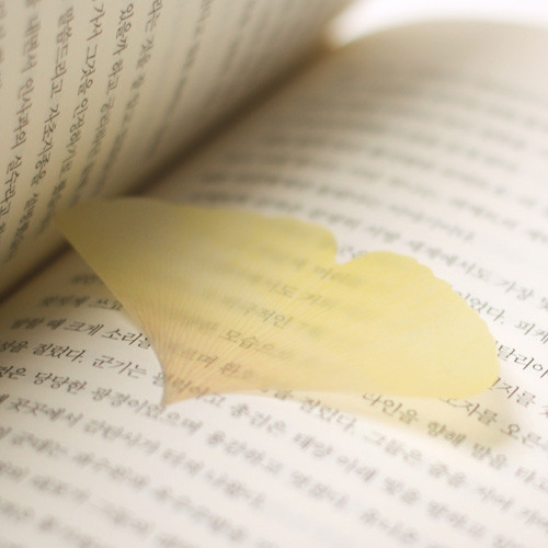 Ginkgo leaf transparent sticky memo notes Small