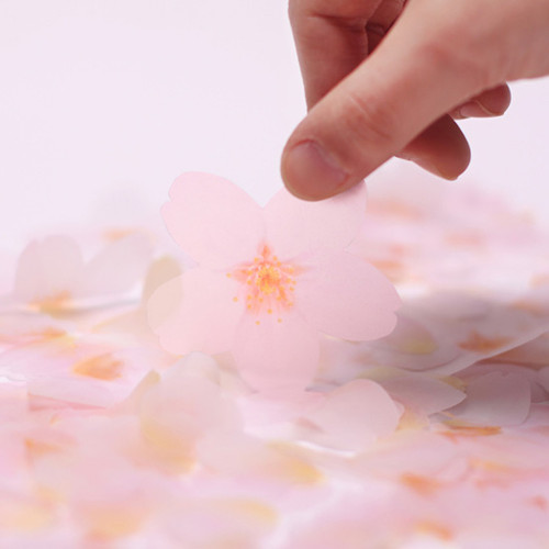 Cherry blossom transparent sticky memo notes Medium
