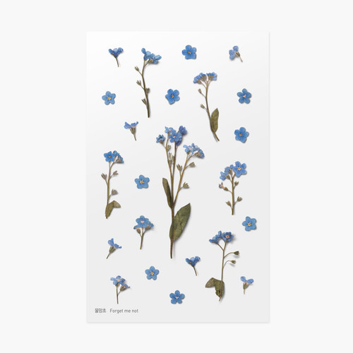 Forget me not press flower deco sticker