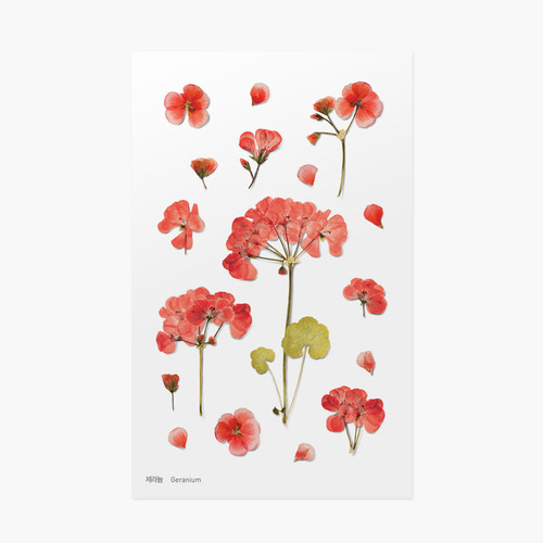 Appree Geranium press flower deco sticker