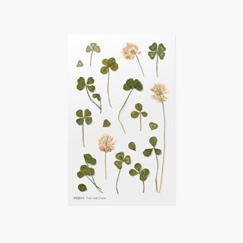 Appree Four leaf clover press flower deco sticker