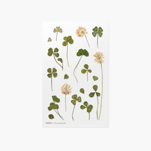 Appree Four leaf clover press flower deco sticker