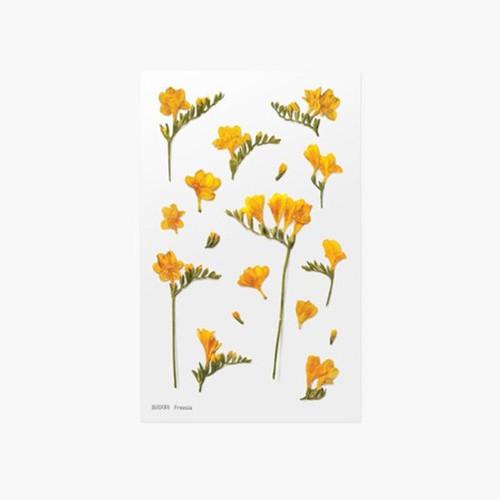 Appree Freesia press flower deco sticker