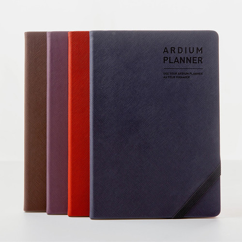 Ardium 2020 Simple large dated weekly diary planner
