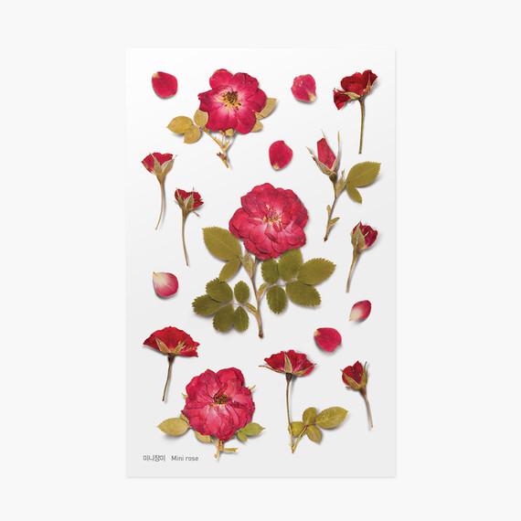 Appree Mini rose press flower deco sticker
