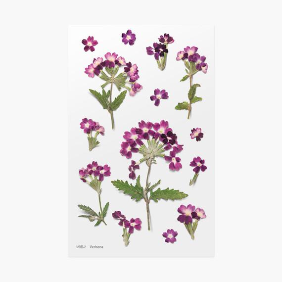 Verbena press flower deco sticker