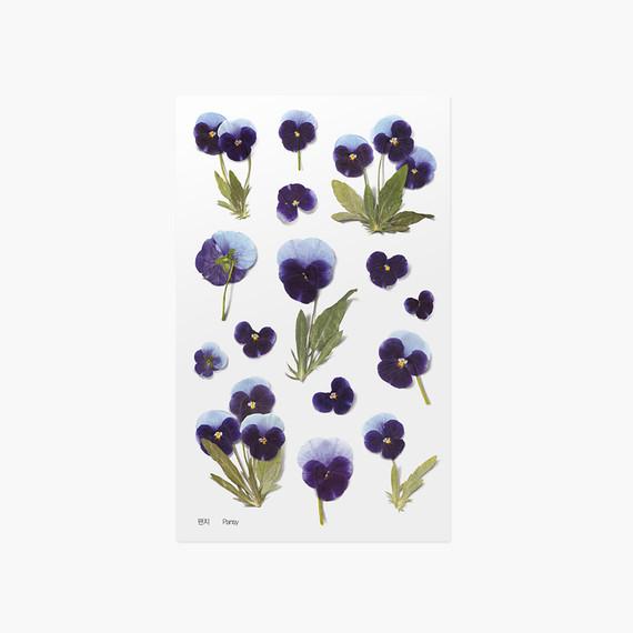 Appree Pansy pressed flower sticker