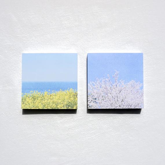 Meri Film Spring flowers memo writing notepad