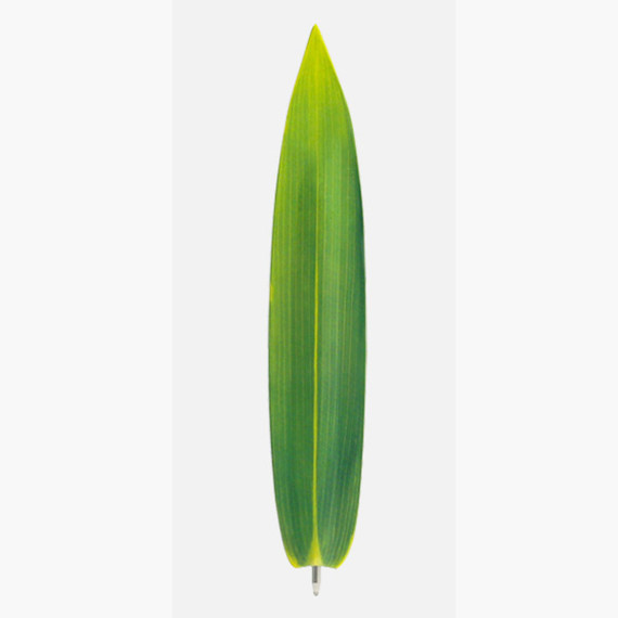 Bamboo green leaf bookmark black ballpoint pen
