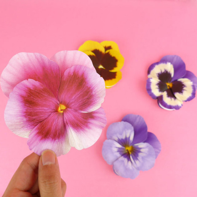 ABJECTION Pansy flower card and envelope set