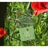 Green - Bookfriends Korean literature flower clear bookmark