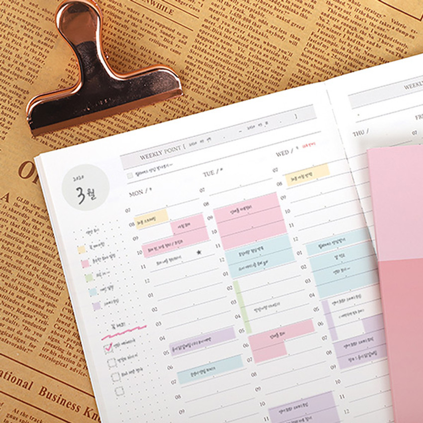 PLEPLE 25 weeks time dateless weekly diary planner