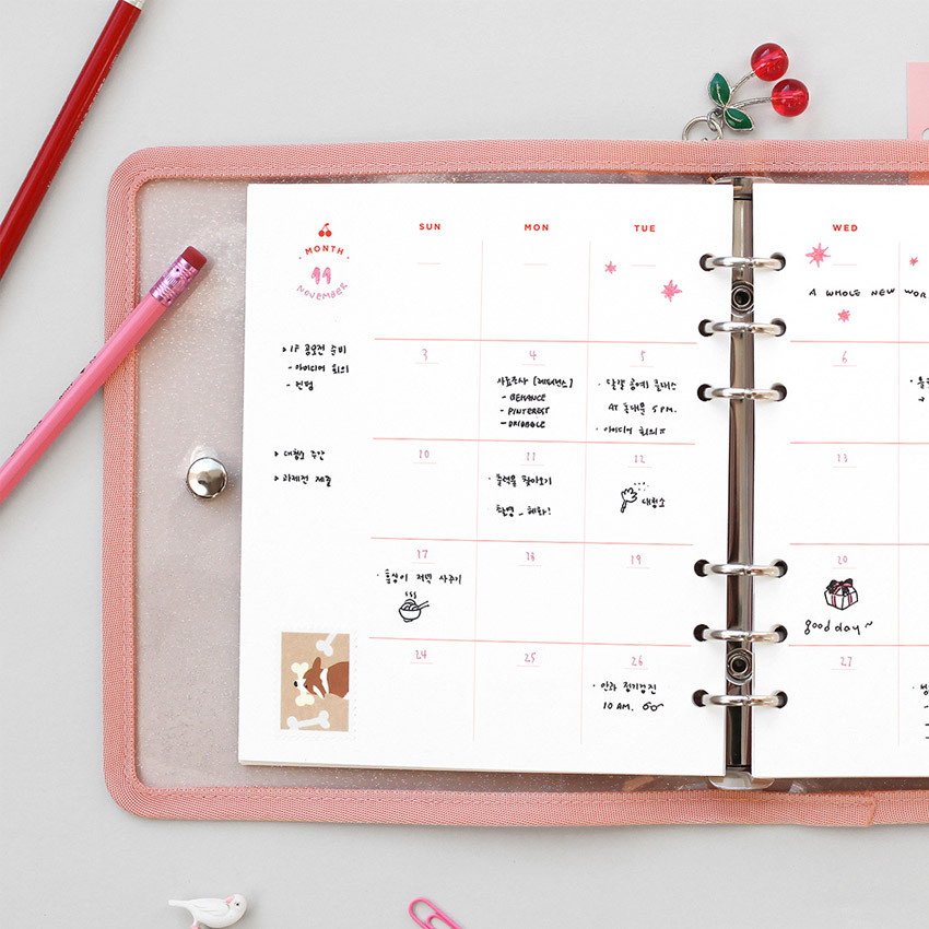 Usage example - 2NUL Cherry pick 6-ring planner monthly plan refill