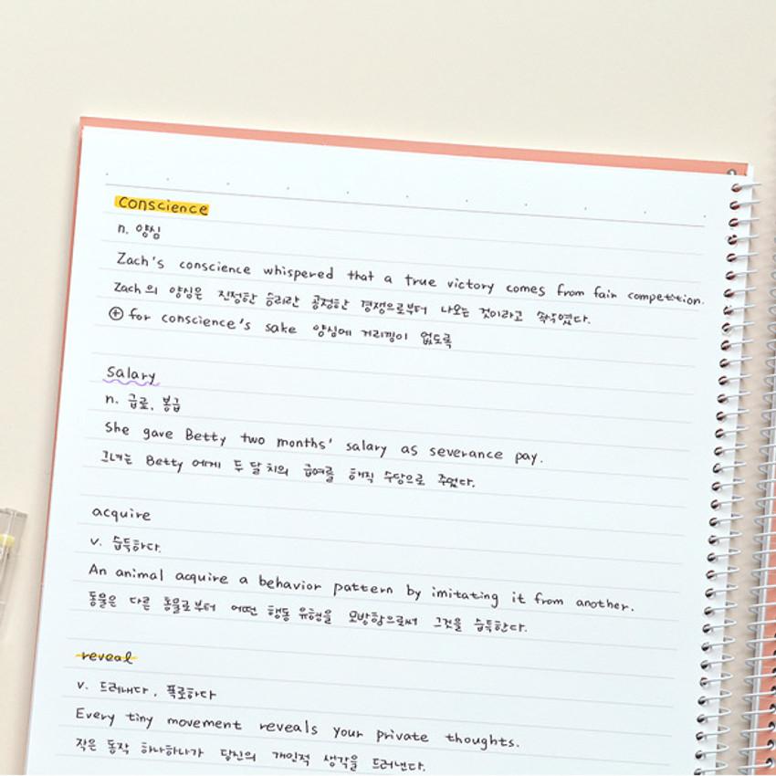 Usage example - Indigo Prism 56 spiral bound B5 lined notebook
