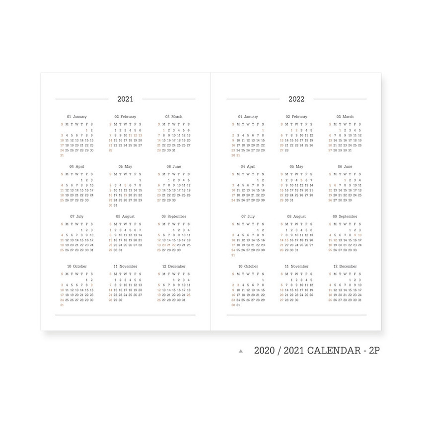 Calendar - Indigo 2021 Official soft dated monthly diary planner