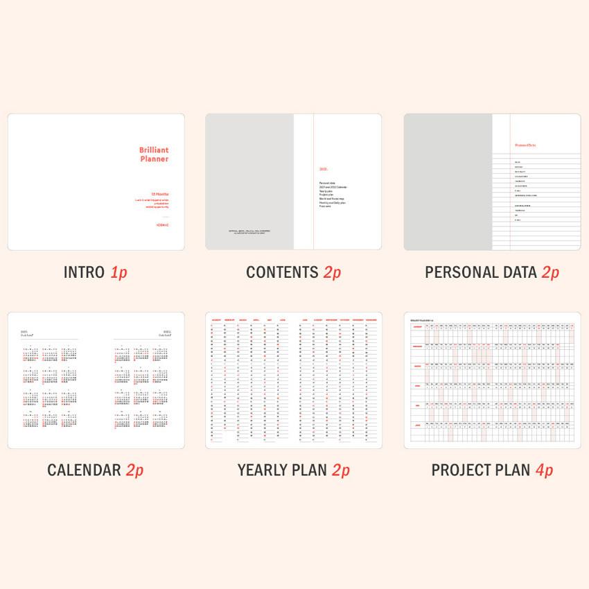 Planner sections - ICONIC 2021 Brilliant dated daily diary planner