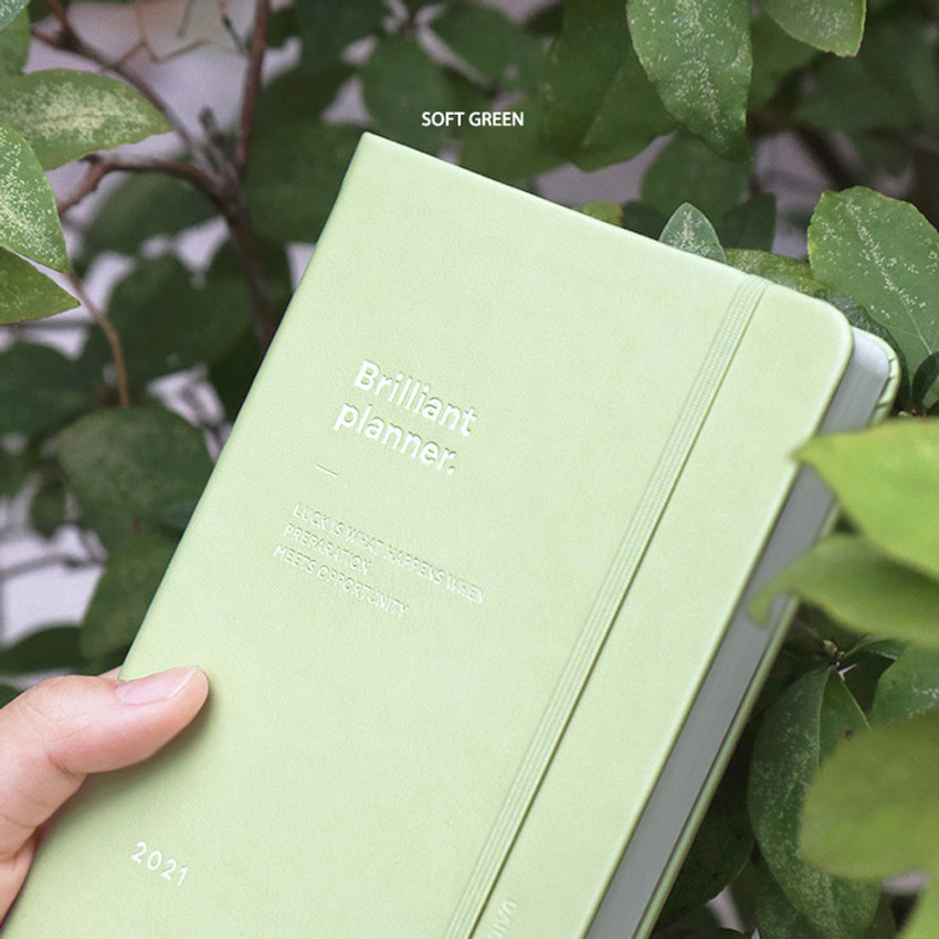 Soft Green - ICONIC 2021 Brilliant dated daily diary planner
