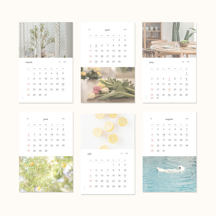 Calendar sections - Dash and Dot 2021 Slow life monthly wall calendar