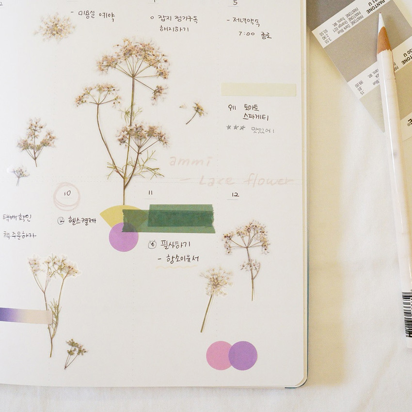 Usage example - Appree Lace flower pressed flower sticker