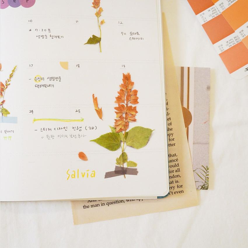 Usage example - Appree Salvia pressed flower sticker