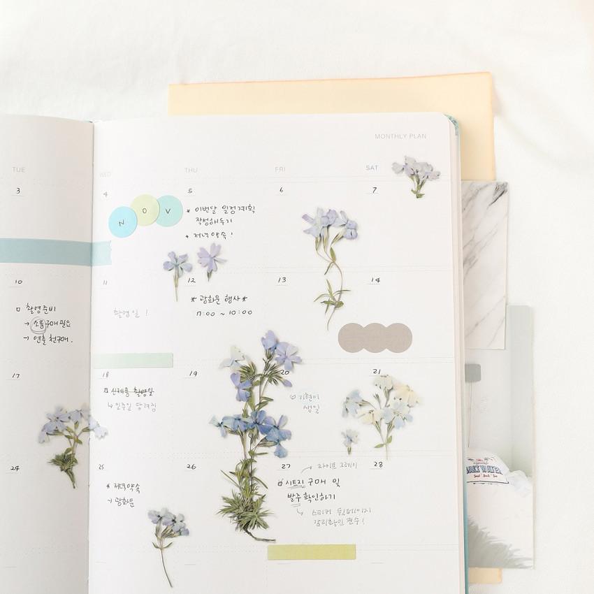 Usage example - Appree Moss phlox pressed flower sticker
