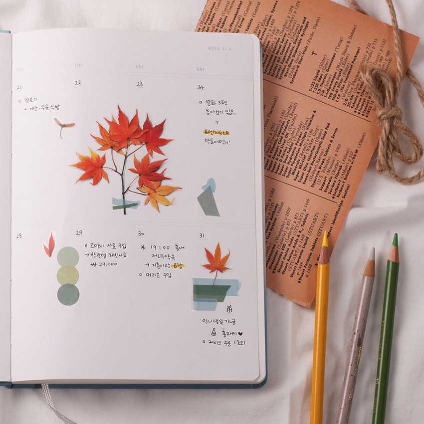 Usage example - Appree Palmate maple pressed flower sticker