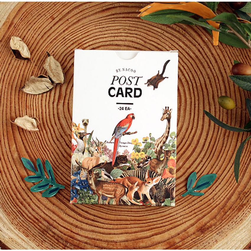 Nature animal picture postcard set
