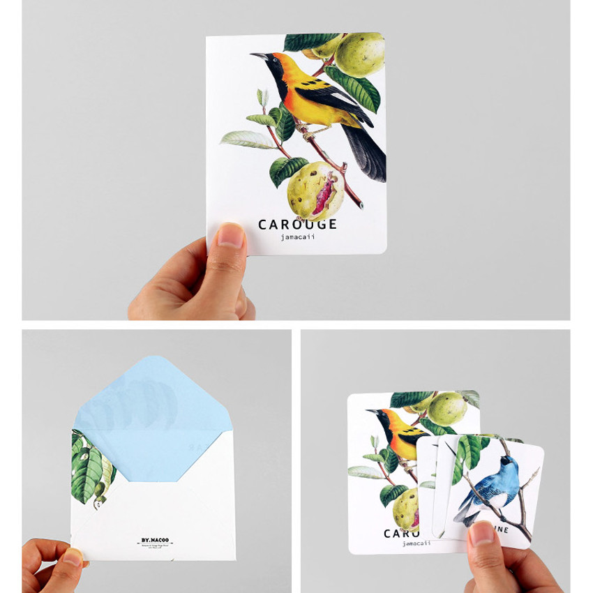 Detail of Bird illustration card set