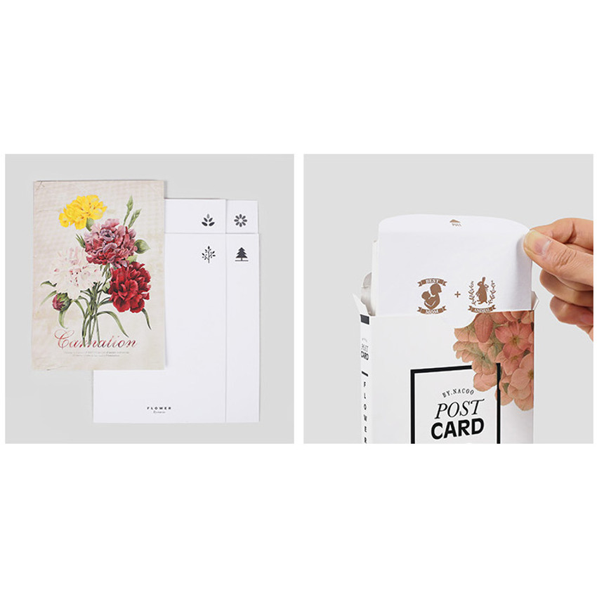 Flower illustration postcard set