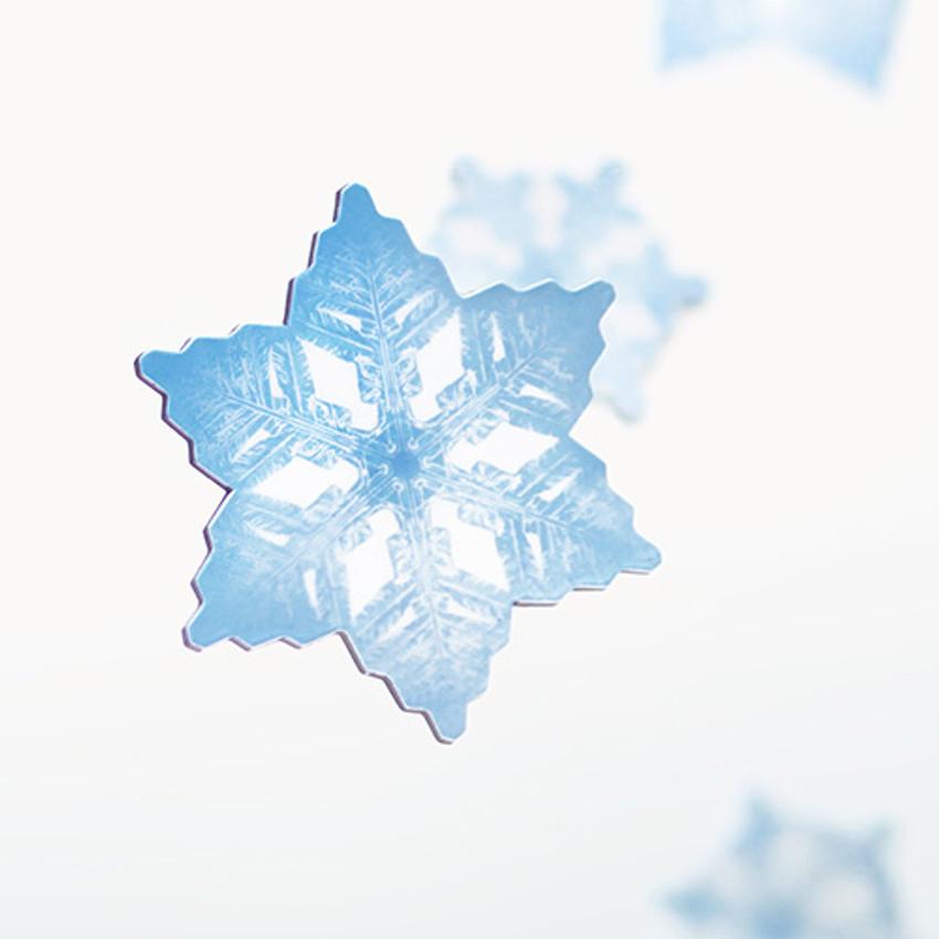 Appree Snow flower magnet set