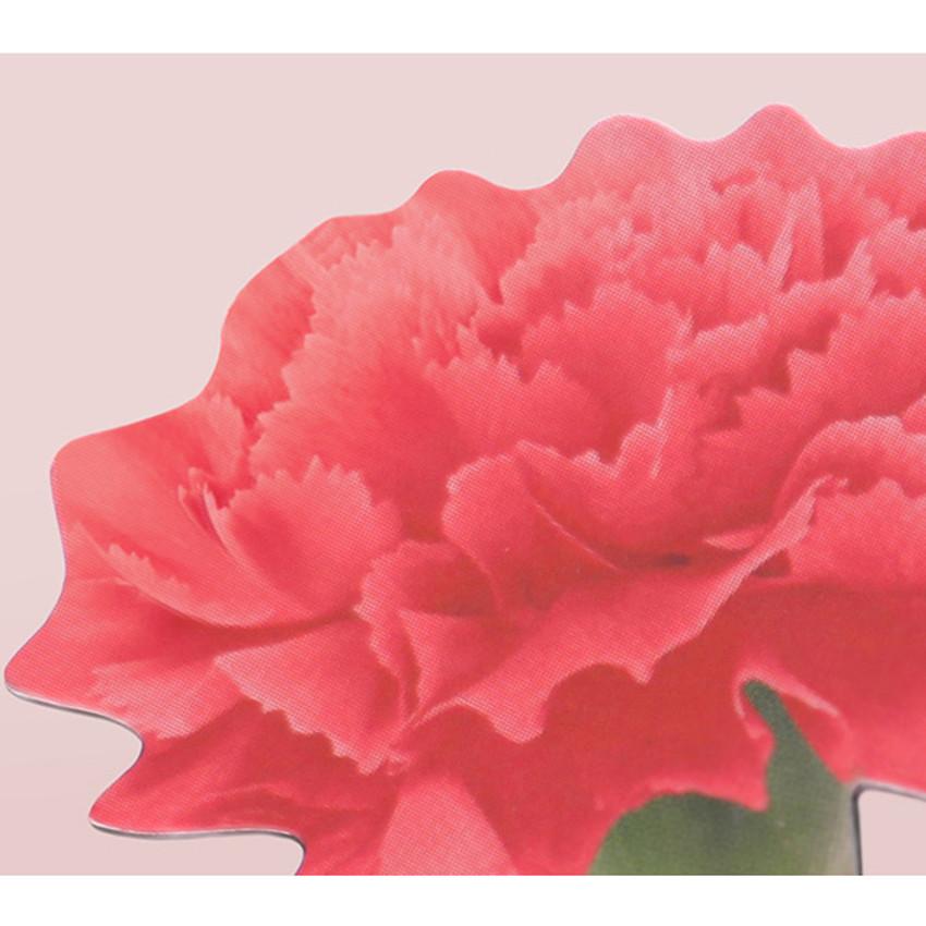 Red - Appree Carnation magnet set
