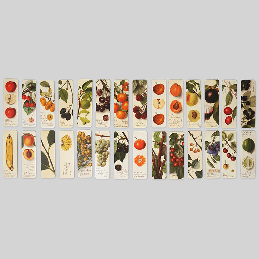 Composition of Fruits bookmark set