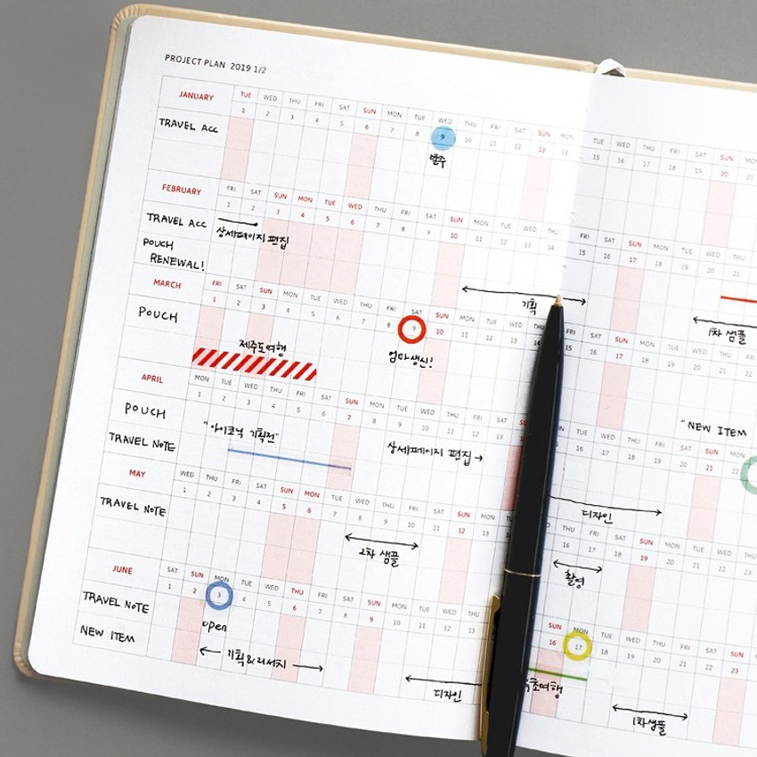 Project plan - 2019 Brilliant simple dated weekly planner